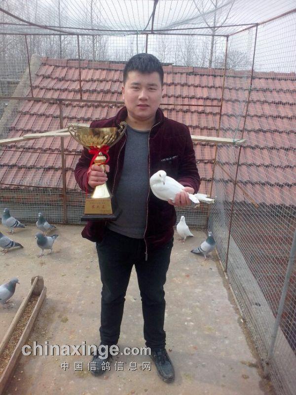 三营信鸽协会_武汉市信鸽协会