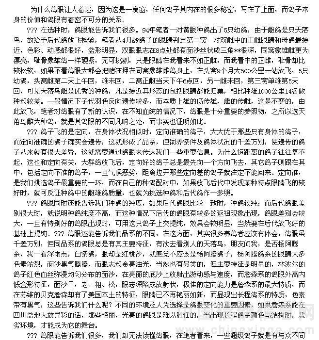 眼志能告诉我们什么,白岩鸽舍 中国信鸽信息网