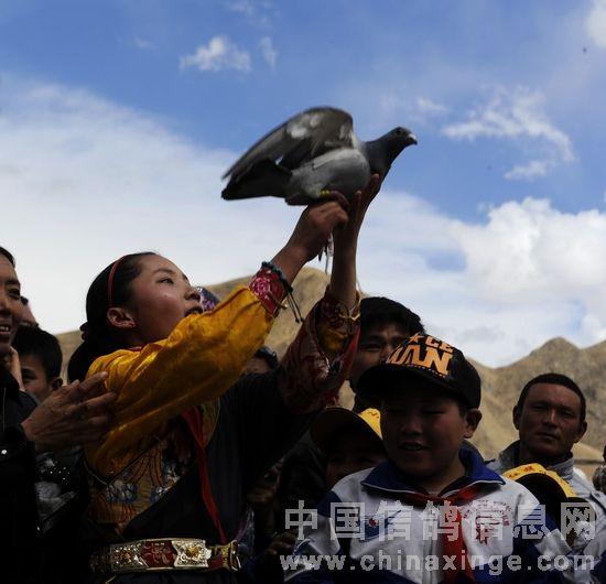 结古地区举行放飞鸽子仪式为玉树未来祈福