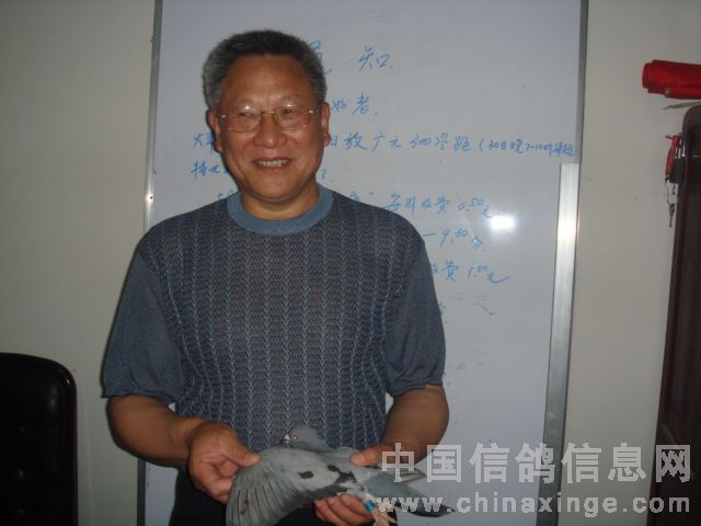 老鸽友-朱绍文先生丰收的喜悦