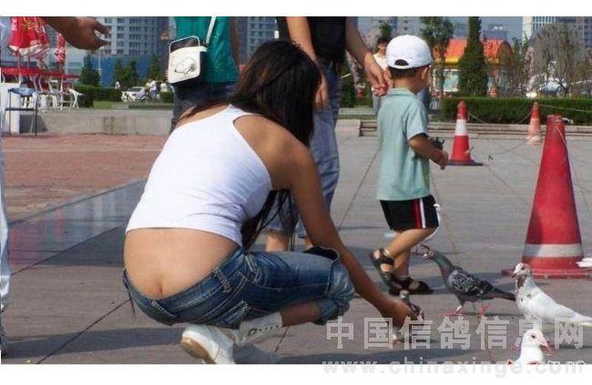 豪放女子露臀于广场喂鸽子