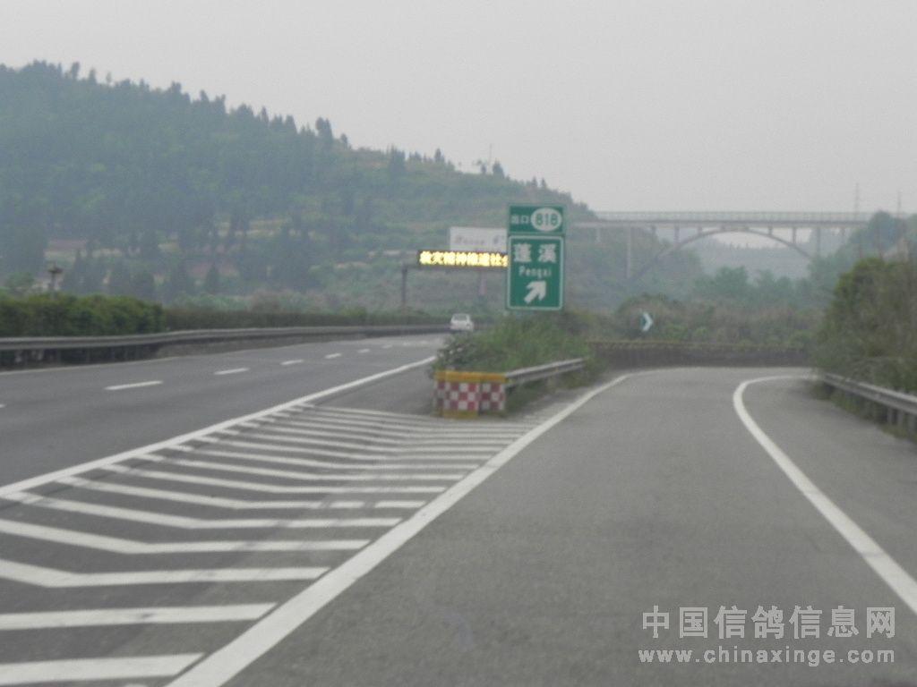2012年夏训书法之乡蓬溪