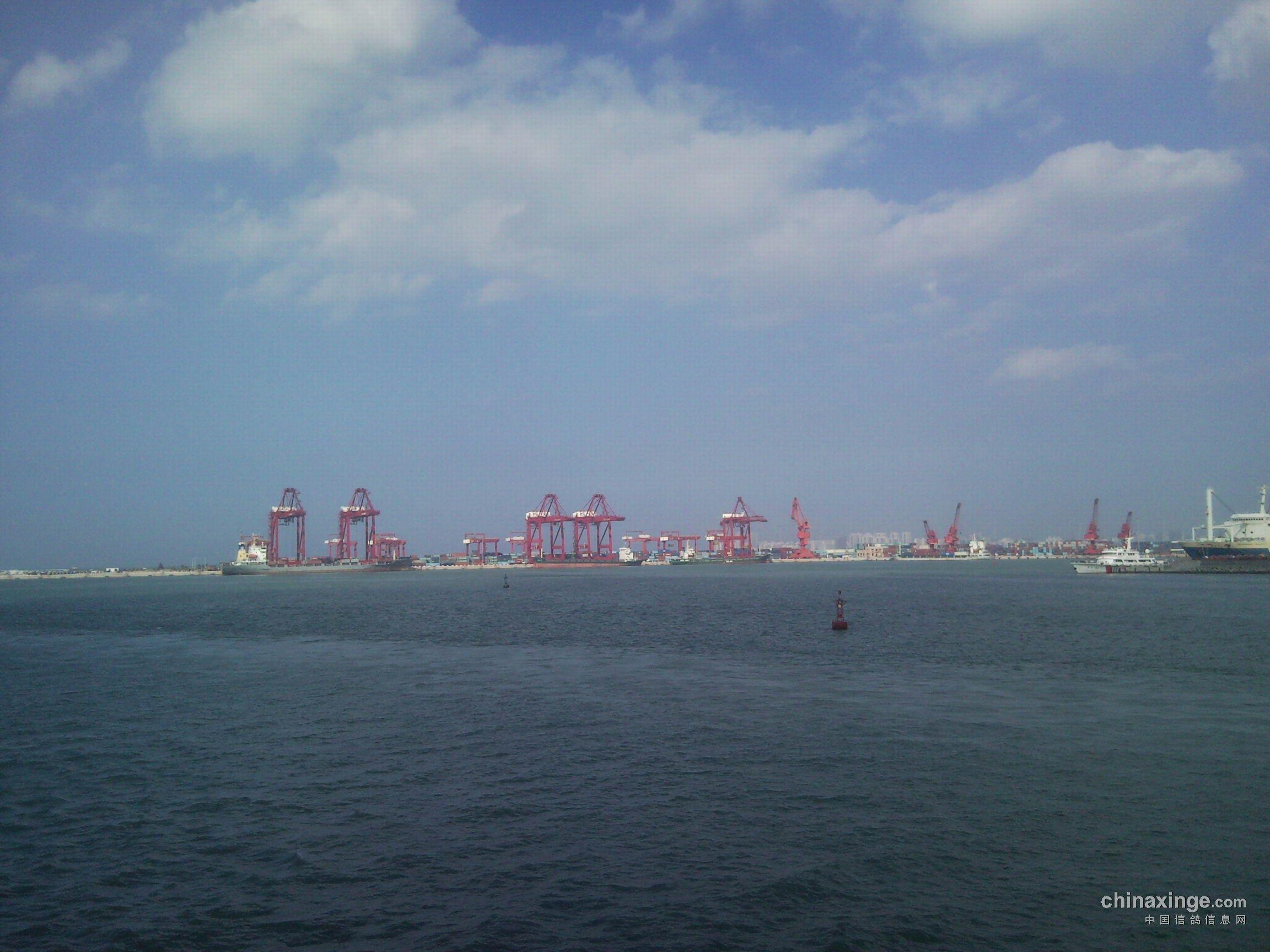 海南椰岛公棚湛江东海岛训放