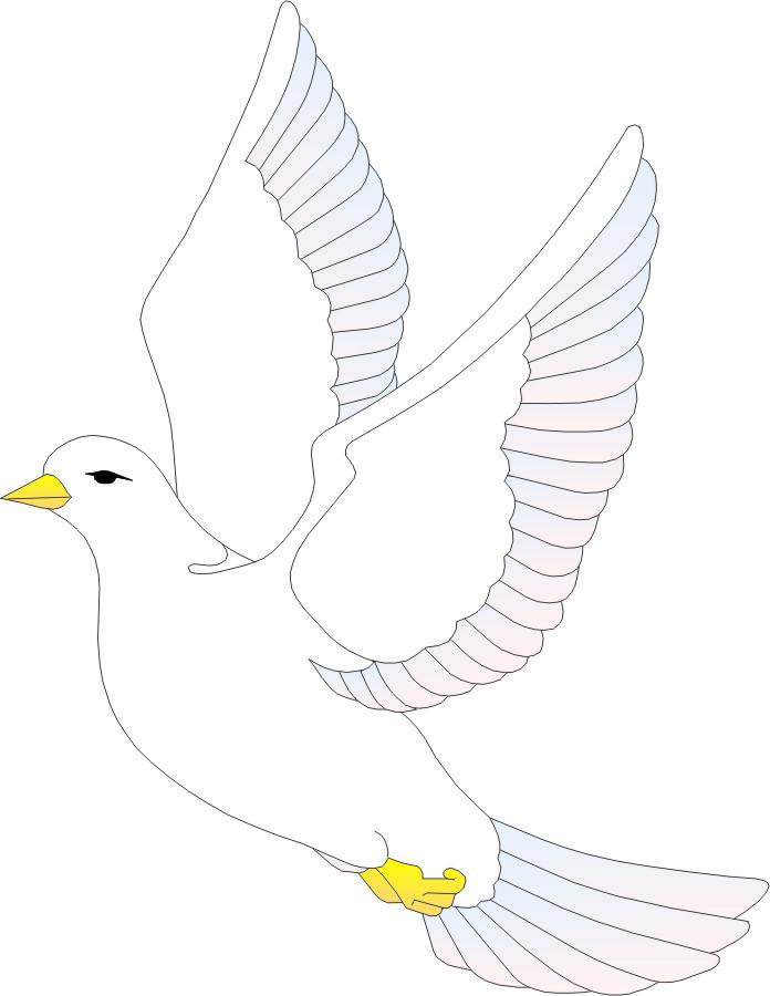 可爱鸽子简笔画